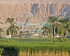 Three civilizations at Luxor, Egypt.  From the main road, one looks across cane fields to a village and then a town, with the Deir el-Bahri (Temple of Hatshepsut) dominating the scene from the mountains beyond.  © Rick Collier<br /> <br /> <br /> <br /> <br /> <br /> <br /> Egypt Egyptian Karnak Luxor tourist tourism history historic antiquity antiquities Thebes Theban Thebian Nile 'Nile River'farm cane village town temple monument Hatshepsut pharoah mountain palm tree 'Deir el-Bahri'