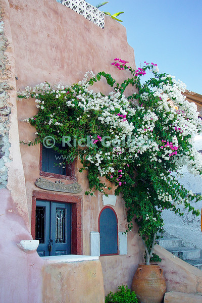 Oia Town, Santorini, Greece.  Flowers help frame the painted concrete front of a small shop.  Santorini is one of several islands that ring the blown-out remains of an ancient volcano, rising from the deep ocean in the Aegean Sea.  The volcano exploded, leaving several islands surrounding a very deep patch of sea -- actually once the caldera of the volcano.  The two large towns on Santorini, Oia and Fira towns, overlook the caldera.  © Rick Collier<br /> <br /> <br /> <br /> <br /> <br /> Greece Santorini Oia cliff cave home caldera Aegean Sea ocean sun stairs steps bright colors door doors window windows wall flower flowers shop shops store storefront