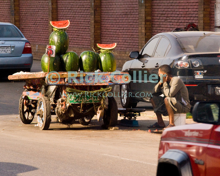 """Cairo, Egypt -- A vendor selling watermelons in central Cairo. © Rick Collier / RickCollier.com.<br /> <br /> <br /> <br /> <br /> <br /> travel; vacation; tour; tourism; tourist; destination; Egypt; Cairo; shop; vendor; shopkeeper; donkey; cart; """"donkey cart""""; fruit; watermelon; street; """"street vendor"""""""