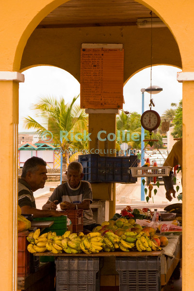 "Kralendijk, Bonaire, Netherland Antilles -- The city farmers' market sits right at the seawall in the center of Kralendijk.   © Rick Collier<br /> <br /> <br /> <br /> <br /> Bonaire; ""Netherlands Antilles""; Caribbean; tropic; tropical; vacation; destination; Kralendijk; market; farmers; ""farmers' market""; seawall; seashore; waterfront; ""sea wall""; harbor; ocean; sea; view;"
