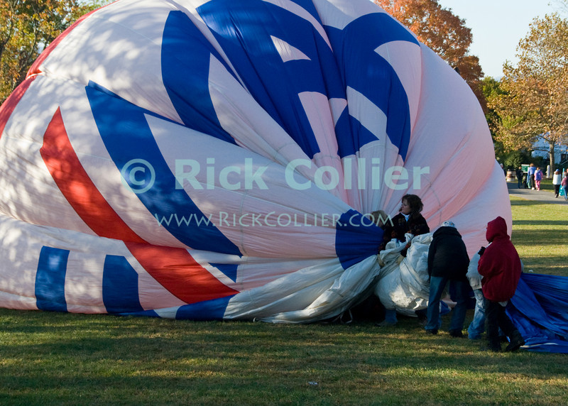 """""""Packing Up"""" -- The ReMax crew takes down one of the more well-known balloons at the annual Winchester Balloon Festival.  Long Branch Farm, Winchester, Virginia, USA.  © RickCollier.com<br /> <br /> <br /> <br /> <br /> <br /> """"balloon festival""""; USA; Virginia; Winchester; """"Long Branch""""; """"Long Branch Farm""""; field; tree; fence; fences; dawn; morning; dew; frost; balloon; lift; """"balloon lift""""; landing; deflate; ReMax; """"Re/Max""""; """"ReMax balloon"""""""
