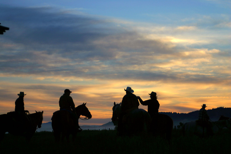 Awaiting the Cattle Drive at Sunrise
