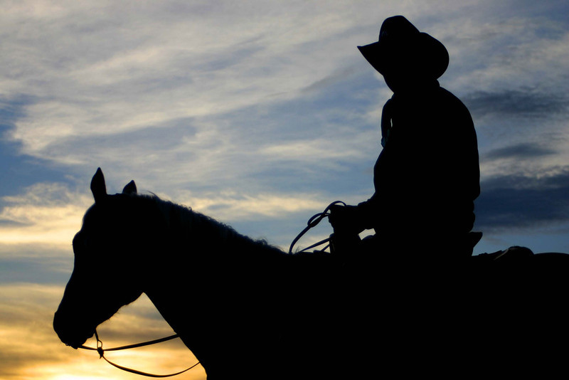 Cowboy at Sunrise