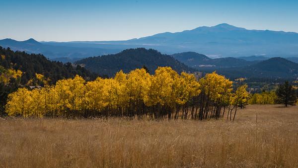 Fall-Aspen-9-26-2015-00103