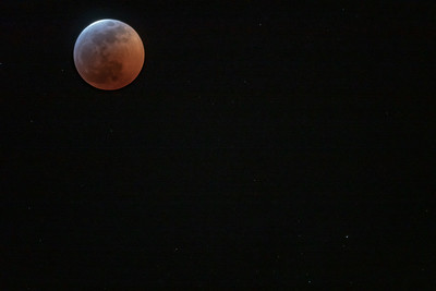 Super Blood Wolf Moon 1-20-19-07144