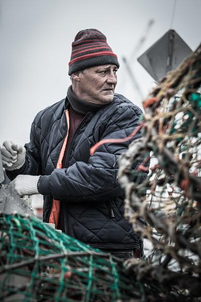 Un capitaine de peche decharge le fruit de son travail, le crabe des neige. - Saint Anne des monts ? - Québec