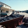 Tracteurs pendant les vendanges; tractors during the  grape harvest