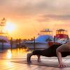 DSC04591 David Scarola Photography, Liz Carson Yoga,w eb
