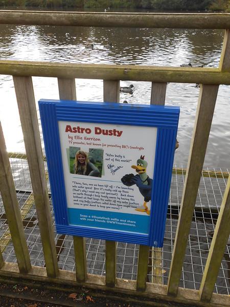 Astro Dusty info