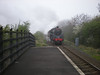 "15th April 09 <br /> <br /> 76079 comes out of the mist into Gypsy Lane Station <br /> <br /> working: <br /> <br />  5Z80 Light loco move from The ELR - NYMR<br /> <br /> Video of it near Nunthorpe can be seen here that i found on U-Tube <br /> <br /> <a href=""http://youtu.be/JD_k9G8G1jk"">http://youtu.be/JD_k9G8G1jk</a>"