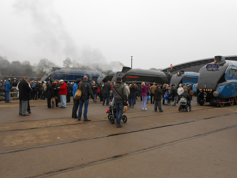 The line up outside Shildon main museum building as follows <br /> <br /> Left to right <br /> <br /> 60007 Sir Nigel Gresley<br /> <br /> 60008 Dwight D Eisenhower <br /> <br /> 60009 Union Of South Africa <br /> <br /> 4489 Dominion of Canada <br /> <br /> 4468 Mallard