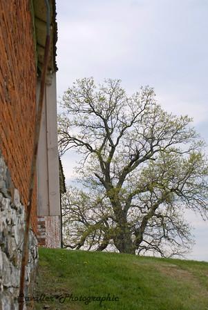 Gettysburg 094