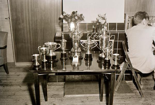 Íslandsmótið 1954