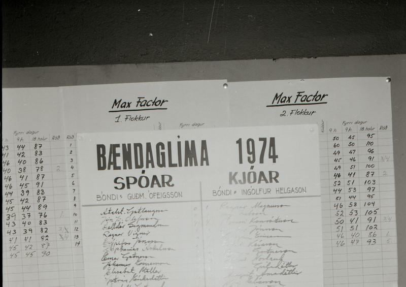 Bændaglíman 1974