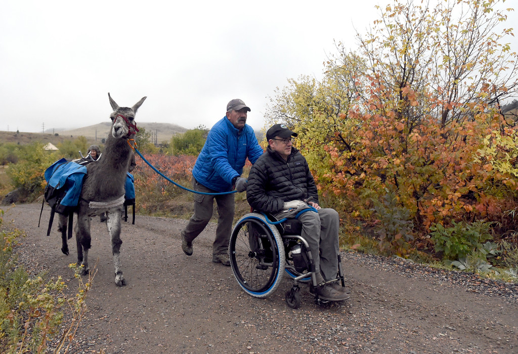 . BOULDER, CO - OCTOBER 9, 2018: Larry Lewellyn, with Foothills Llamas, at center, and Topher Downham, with Boulder Open Space and Mountain Parks, guide a llama on Tuesday at the Doudy Draw Trailhead in Boulder County. Boulder\'s Open Space and Mountain Parks, The Center for People with Disabilities, and Pack Animal Magazine teamed together to try to find a way to use the llamas to help people with disabilities access the backcountry trails. For more photos and video of the event go to dailycamera.com (Photo by Jeremy Papasso/Staff Photographer)
