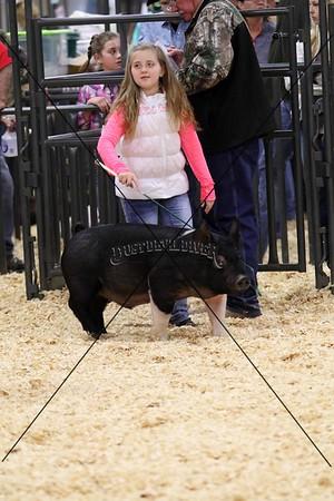 Swine II