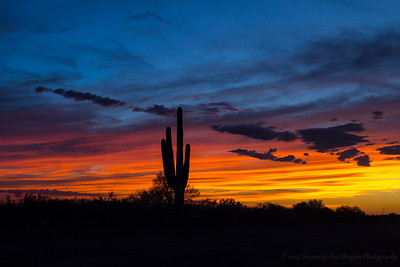 Arizona Sunsets