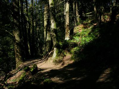 trail09