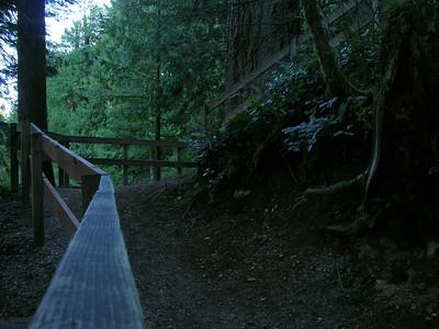 trail06