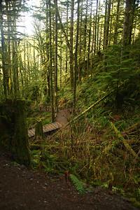trail11