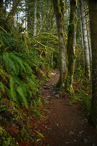 trail10