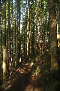trail14