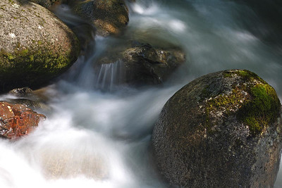 Wallace River, 20090603