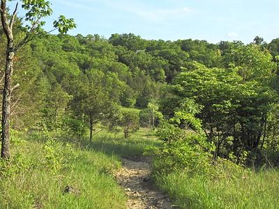 Valley View Glade - Hillsboro, MO - 5.26.18