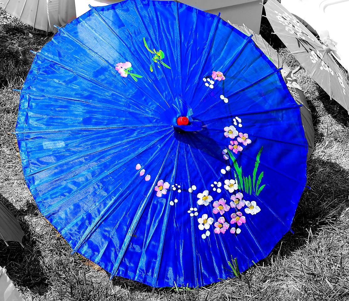 Japanese Festival 2011, Missouri Botanical Gardens