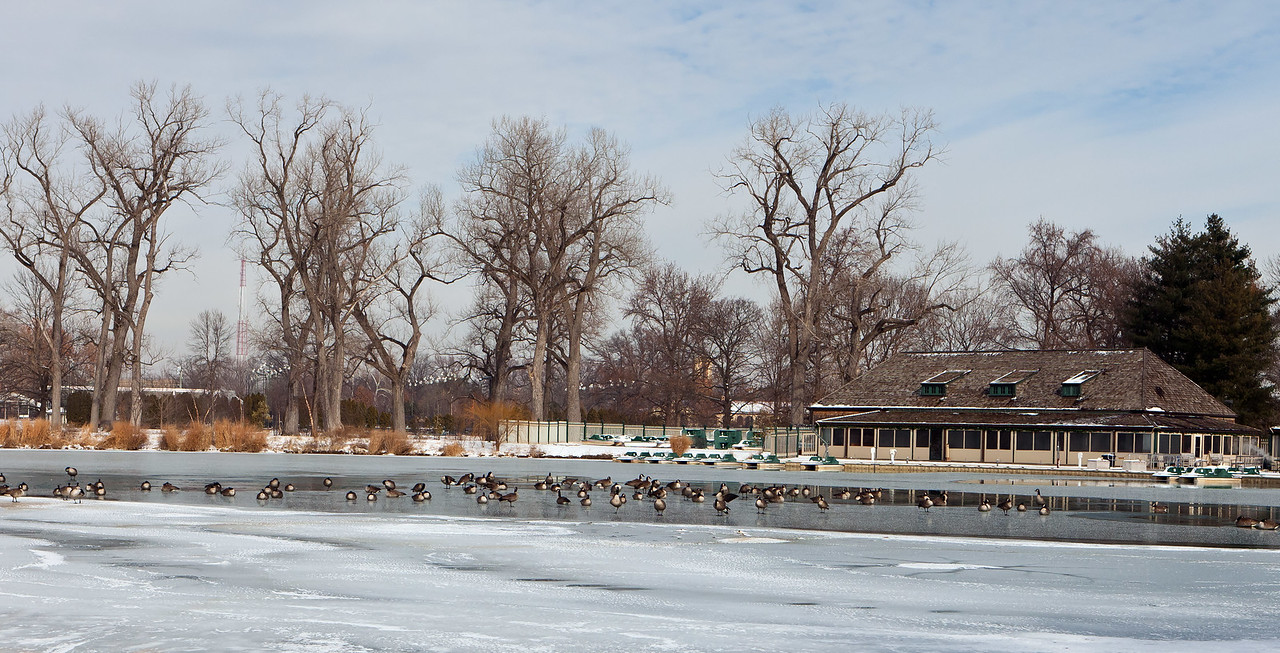 St. Louis in Winter. Images from Forest Park. Art Museum, Art Hill, and the Boathouse.