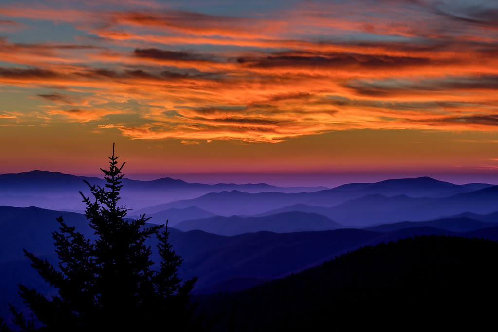 Silhouette at Clingmans Dome