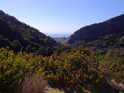View from the top – Arroyo Hondo canyon and the Gaviota Coast beyond