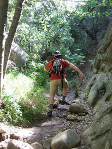 Leaping up the trail