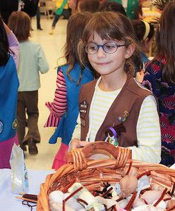 Girl_Scouts_Chesterbrook_Thinking_Day_2009_02_27_0005