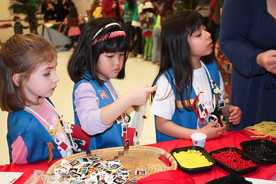 Girl_Scouts_Chesterbrook_Thinking_Day_2009_02_27_0023