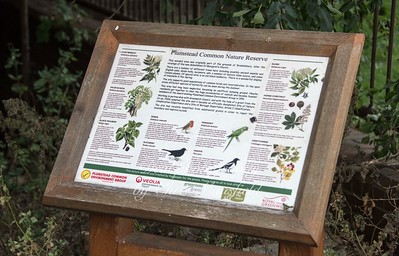 Plumstead common nature reserve