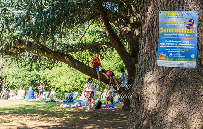 July8th 2017 Rockliffe parksfest 11