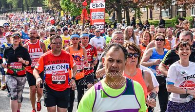 marathon 48