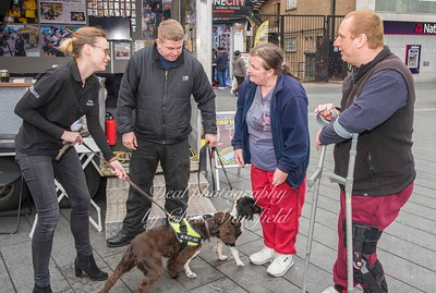 March 31st 2017 Sniffer dog mansfield 03