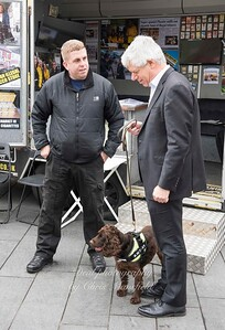 March 31st 2017 Sniffer dog mansfield 12