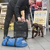 March 31st 2017 Sniffer dog mansfield 15