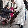 March 31st 2017 Sniffer dog mansfield 16