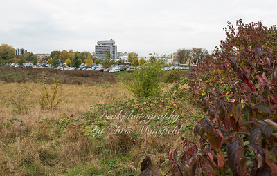 Nov' 4th 2016. Q E Hospital from Woolwich common