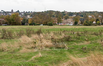 Nov' 4th 2016 Woolwich common