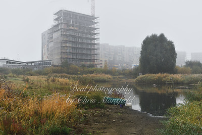oct 30th 2016 Greenwich ecology park 01