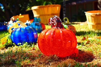Glass Pumpkins