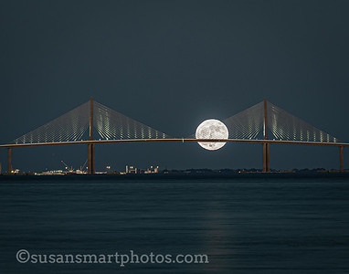 Harvest Moon Rising at the Sunshine Skyway