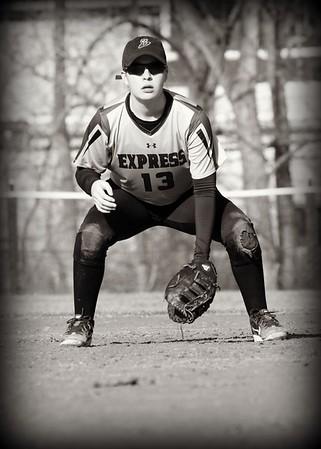 Elmira Varsity softball 2017
