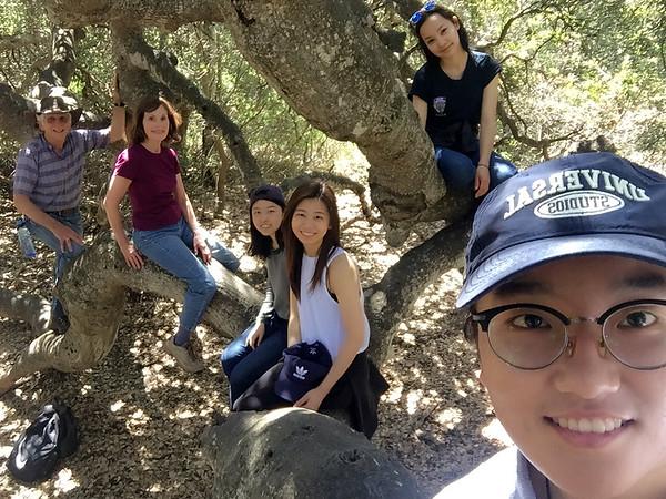 Garland Ranch, April 2018