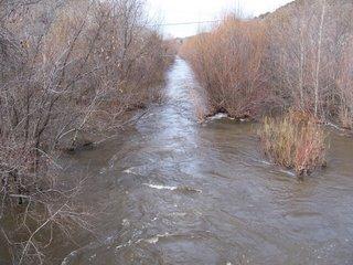 Carmel River running though Garland Ranch